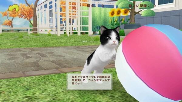 ボールで遊ぶ猫(てのひらニャンコ)