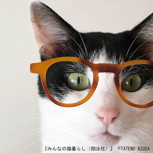 TATENO AZUSAさんのInstagram