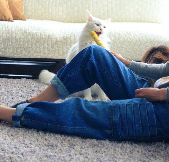 しっぽで猫をいなす