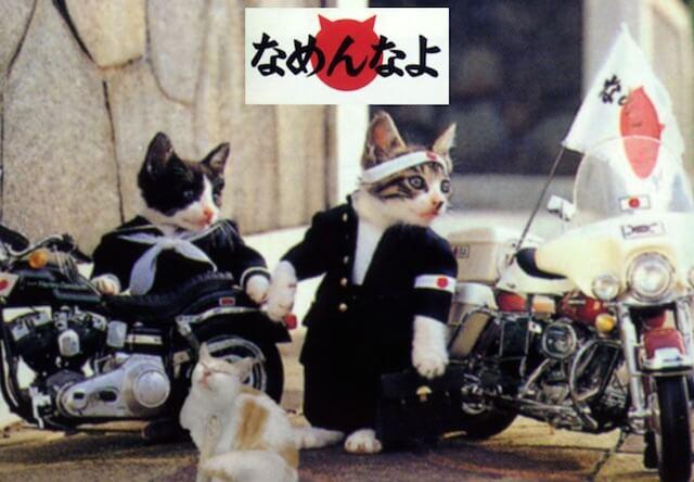 猫キャラクターなめねこ