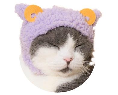 猫のかぶりもの、親ひつじ(ぐっすりパープル)