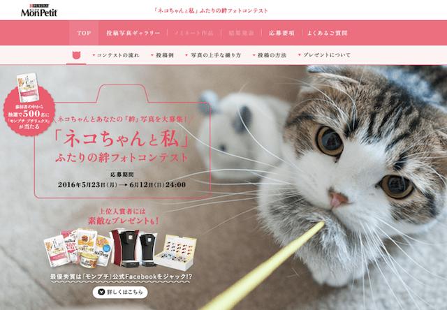 モンプチ 「ネコちゃんと私」ふたりの絆フォトコンテスト
