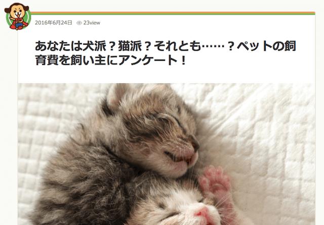 猫の平均飼育費用は1ヶ月約1万円、オウチーノ調査2016