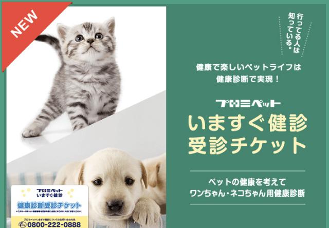 ペットの健康診断チケット、東京キャットガーディアンで販売