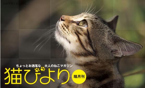 雑誌「猫びより」