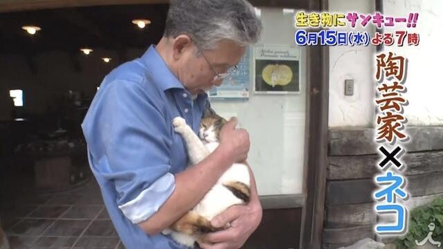 陶芸家と暮らす猫にも密着