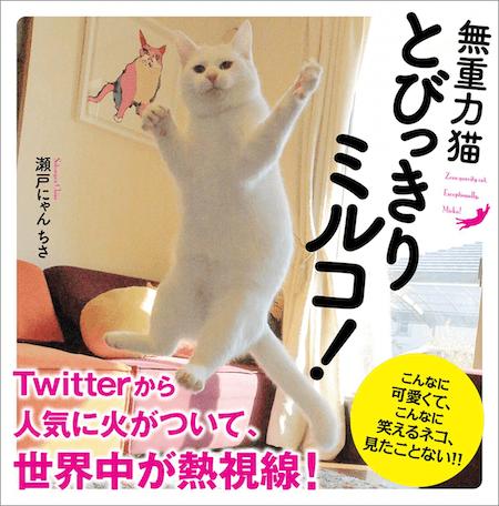 無重力猫 とびっきりミルコ!