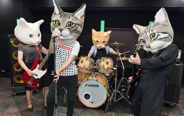 リアル猫バンド