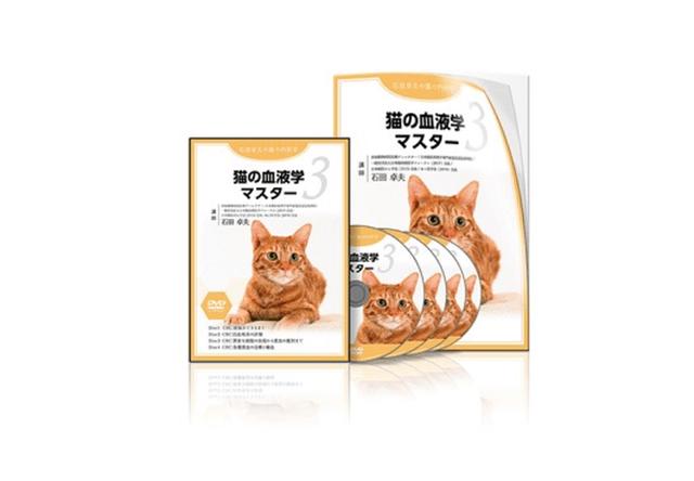 獣医師向けのDVD教材、「猫の血液学マスター」が発売開始