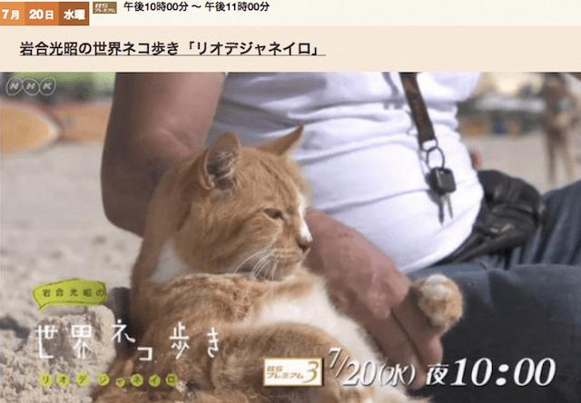 岩合光昭の世界ネコ歩き、7/20の新作は「リオデジャネイロ」