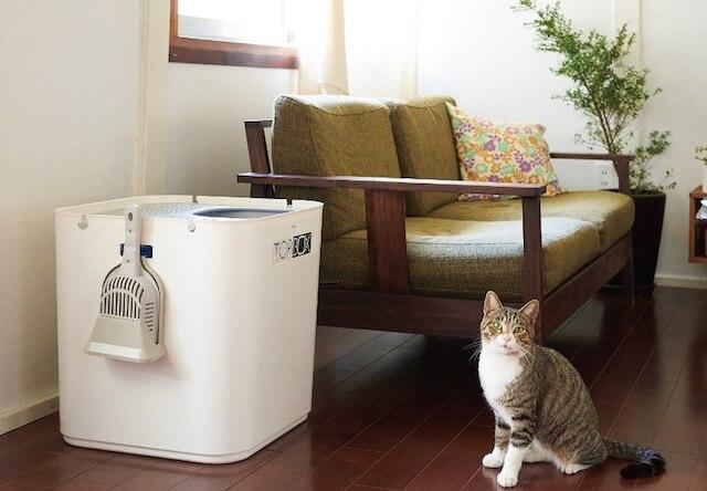 上から出入りするおしゃれな猫トイレ「TOP BOX」トップボックス