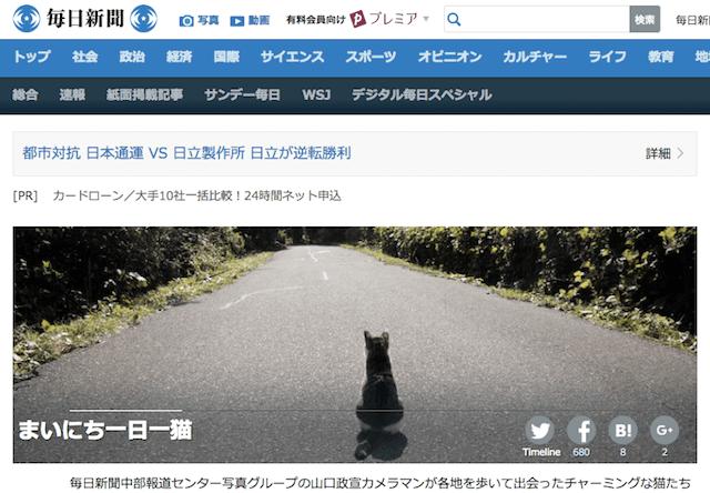 毎日新聞のニュースサイト「まいにち一日一猫」