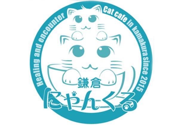 鎌倉で子猫の譲渡会、明日7/30から2日連続で開催