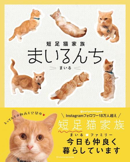 「短足猫家族まいるんち」の表紙