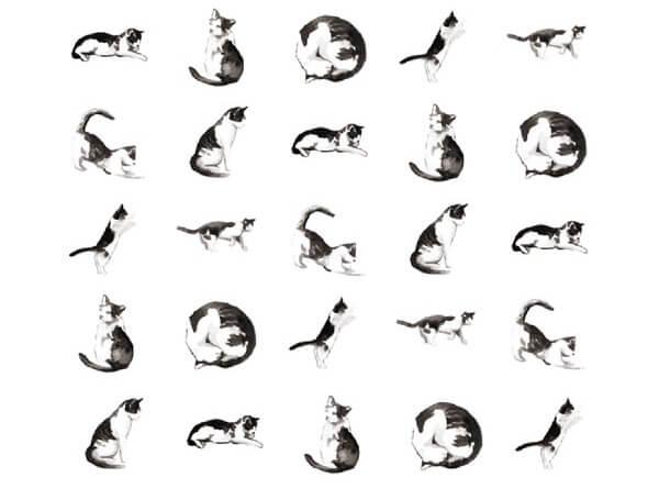 ネイルシールには7種類の猫が