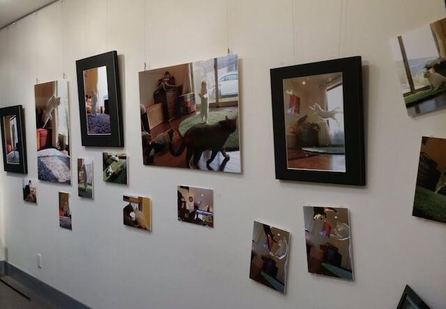 「無重力猫 とびっきりミルコ!」発売記念写真展