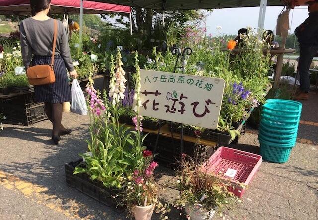 八ヶ岳南麓の花畑 「花遊び」
