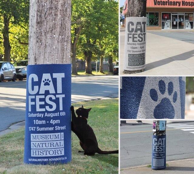 猫の爪とぎが一体化した広告