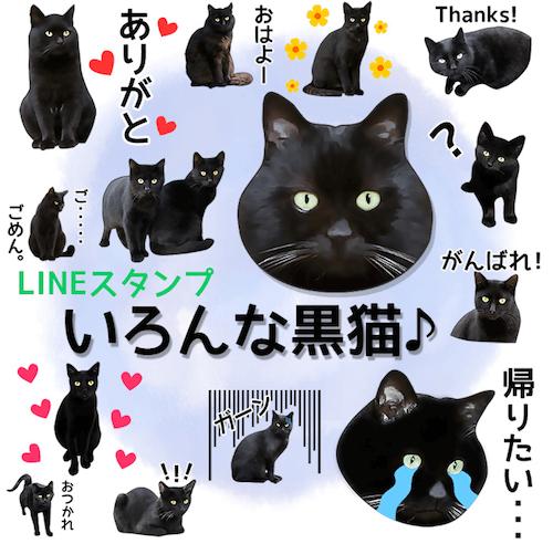 LINEスタンプ、「いろんな黒猫♪」