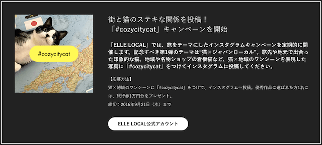 #cozycitycat インスタグラムキャンペーン