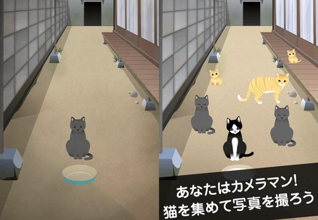 カメラマンになりきって猫を撮影するスマホゲーム「ねこやしき」