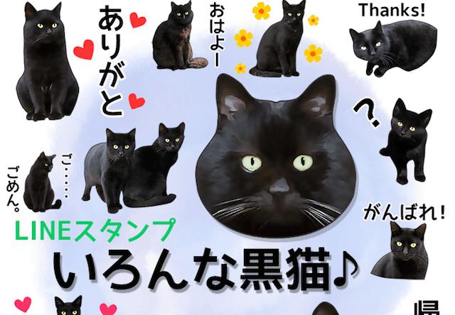 黒猫好きにおすすめ、LINEスタンプ「いろんな黒猫♪」が新登場