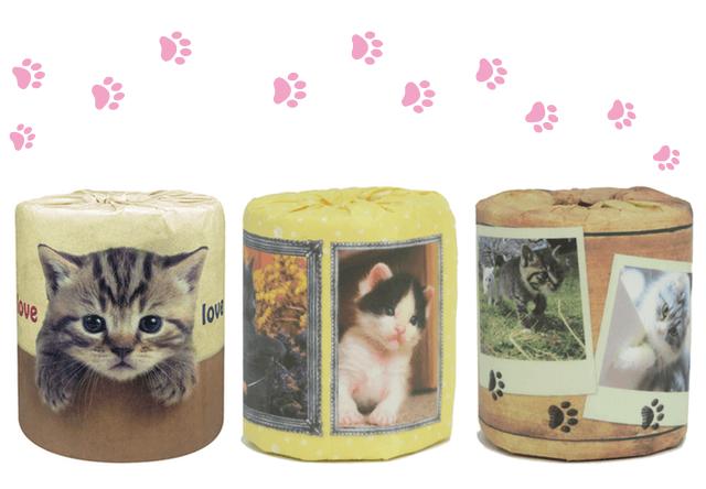 猫のトイレットペーパーが新発売!愛猫の写真で作れるプランも