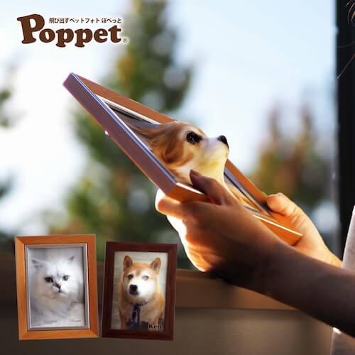 写真から愛猫の顔が飛び出す「Poppet(ぽぺっと)」