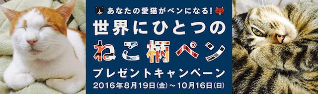 エナージェル限定ネコ柄発売記念 インスタグラムキャンペーン