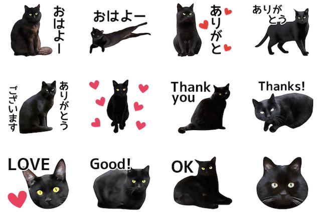 いろんな黒猫 スタンプイメージ1