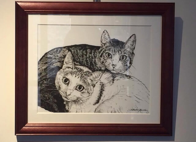 山田貴裕さんによる猫のペン画1