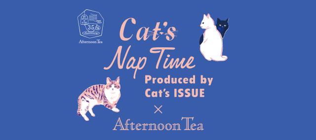 キャッツ ナップタイム(Cat's Nap Time)