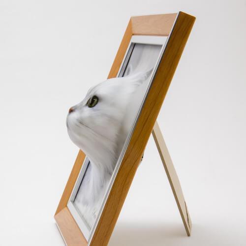 猫の顔写真が立体的に