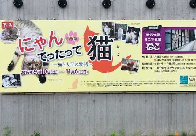 仙台文学館 「にゃんてったって猫」