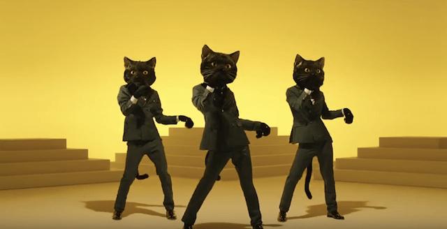 黒ネコダンサーが踊りまくります