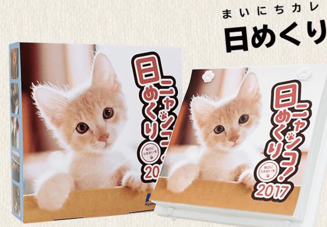 にゃんと賞金20万円!日めくりニャンコ!カレンダー2018の猫写真を募集中