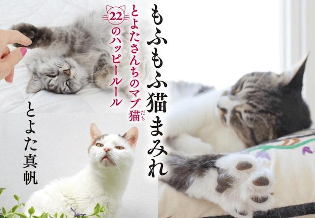 とよた真帆さんの新刊「もふもふ猫まみれ」&サイン会も