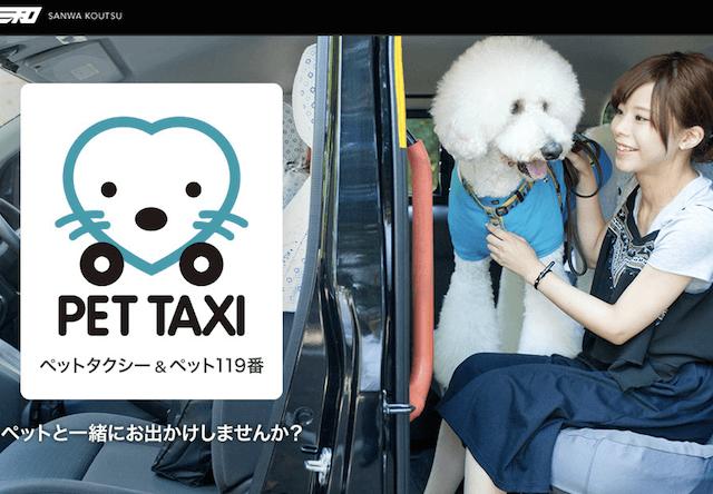 猫もOK!三和交通がペットタクシーを開始、急病時のペット119番も