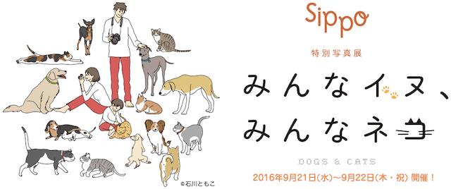 sippo特別写真展「みんなイヌ、みんなネコ」