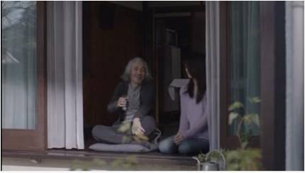 敬老の日、猫の飼い主に贈る動画「18歳のお爺ちゃん」映像1
