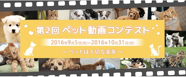 第2回ペット動画コンテスト
