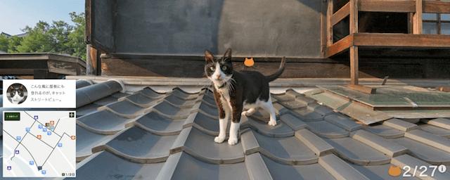 瓦屋根の上でも猫に遭遇(広島キャットストリートビュー竹原編)