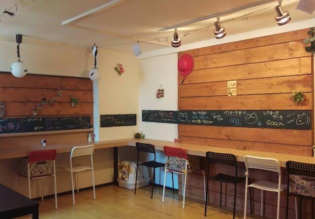 猫カフェ音々猫(ねねねこ)のカフェスペース