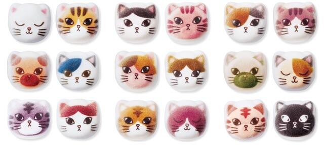 猫ほうずいの種類はぜんぶで18種類