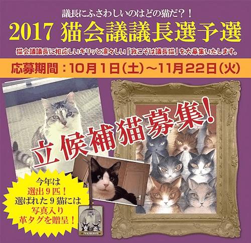 猫のダヤンのわちふぃーるどが開催している「猫会議の議長選予選」