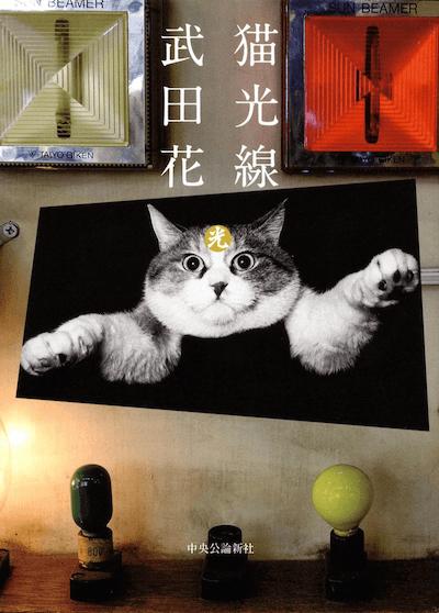 写真家・武田花さんの写真集「猫光線」
