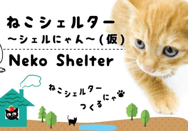 岐阜県の猫殺処分0を目指し、複合型保護猫施設の計画が進行中