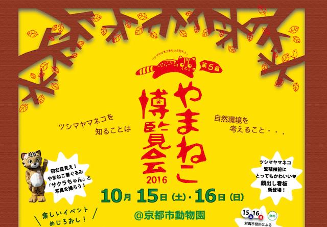 京都市動物園、ツシマヤマネコを知る「やまねこ博覧会」を開催