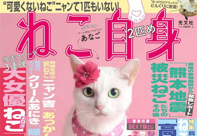 女性自身×猫の第2弾「ねこ自身 2匹め」が発売!表紙は猫侍のあなご