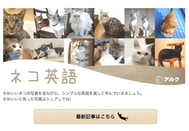 猫写真×例文でネコ英語を学べるウェブサイト「GOTCHA!(ガチャ)」、アルクが提供